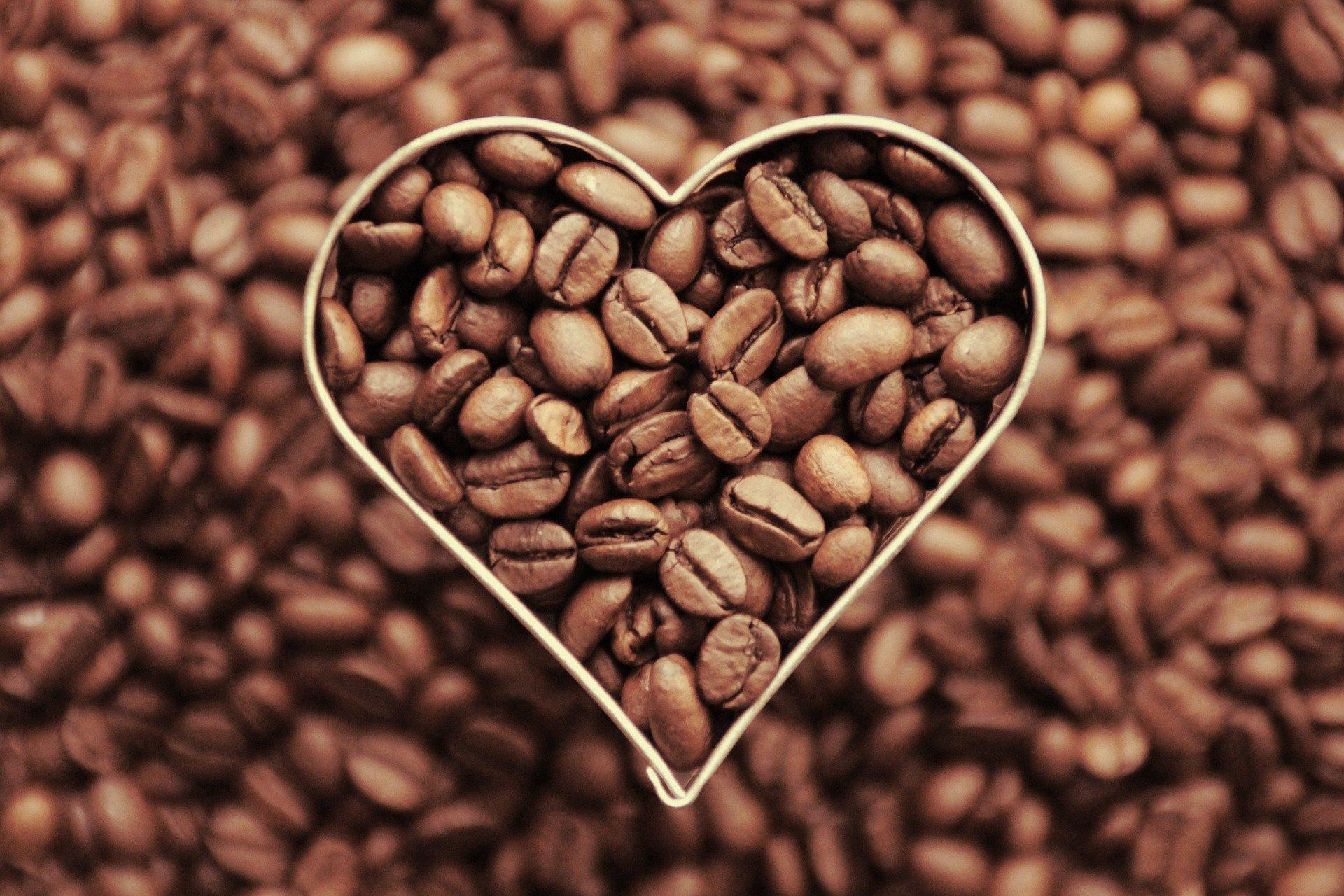 Filter, správna voľba pre vaše srdce